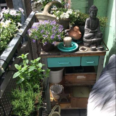 Pflanztisch mit Deko, Blumen, Kräutern